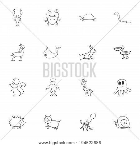 Set Of 16 Editable Animal Icons. Includes Symbols Such As Tentacle, Slug, Urchin And More. Can Be Used For Web, Mobile, UI And Infographic Design.