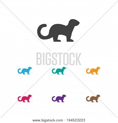 Vector Illustration Of Zoology Symbol On Ferret Icon. Premium Quality Isolated Polecat Element In Trendy Flat Style.