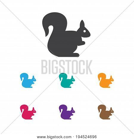 Vector Illustration Of Animal Symbol On Squirrel Icon. Premium Quality Isolated Wild Rodent Element In Trendy Flat Style.