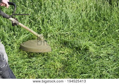 Application Trimmers. Mowing Green Grass Using A Fishing Line Trimmer