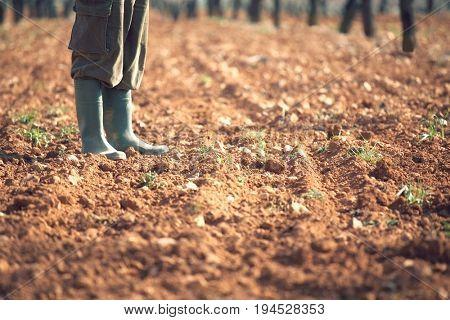 Low section of farmer standing on fertile soil in farm