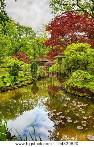 Amazing Scenery of Beautifully Toned and Colorful Japanese Garden in the Hague (Den Haag) in the Netherlands Straight After the Rain. Zen Sculptures and Stones at Background.Vertical Image
