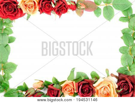 Frame from colorful roses, isolated on white