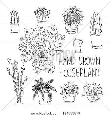 big set of hand drawn houseplants monstera bamboo cactus fern and other doodle houseplants in flowerpots.