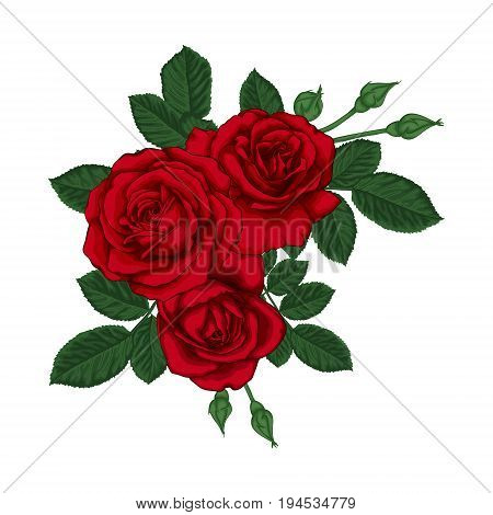 beautiful bouquet with red roses and leaves. Floral arrangement. design greeting card and invitation of the wedding birthday Valentine s Day mother s day and other holiday