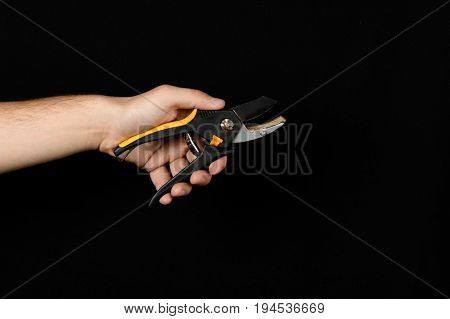 Secateurs With Plastic Handle In A Man's Hand On A Black Background