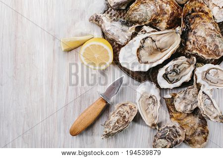 Raw oysters with lemon and ice on a wooden background. Top view