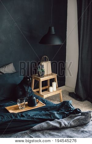 Black stylish loft bedroom. Breakfast and reading on tray. Cat sitting in bed. Lamp and interior decor over blackboard. Cozy modern living space.