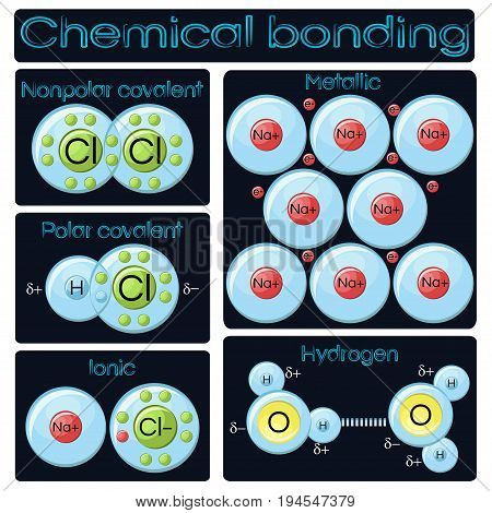 Types of chemical bonding diagram. Covalent polar and nonpolar, ionic, metallic and hydrogen bridge bonds models. Educational chemistry. Vector illustration in flat style on dark blue background.
