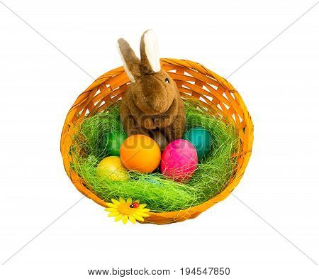 Brown plush soft rabbit in a wicker basket on a green straw surrounded by colorful eggs on a white background