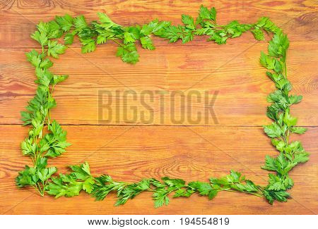 Background of the parsley twigs laid out around the perimeter in the form of a frame on old wooden planks with empty central part
