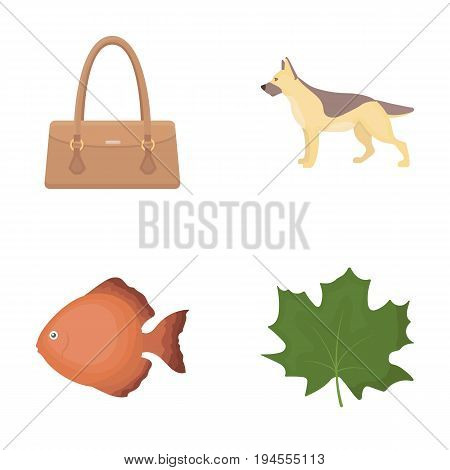 trade, business, leisure and other  icon in cartoon style., Maple, oxygen, ecology icons in set collection