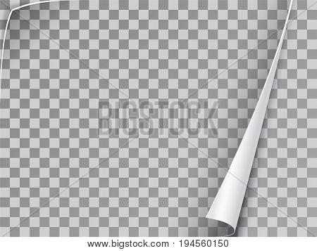 Curled corner of paper. Slightly opened book page. Realistic vector element on transparent background.