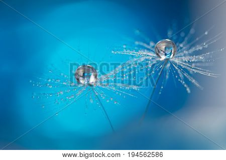 Beautiful dew drops on a dandelion seed macro. Beautiful soft light blue and violet background. Water drops on a parachutes dandelion on a beautiful blue. Soft dreamy tender artistic image form.