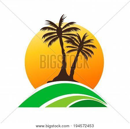 colored palm tree image summer design illustration
