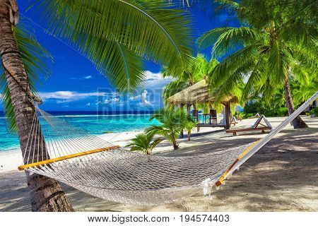 Hammock between palm trees on a vibrant tropical beach of Rarotonga, Cook Islands, South Pacific