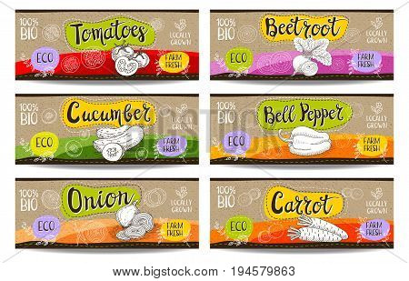 Set of colorful labels sketch style, food, spices cardboard texture horizontal. Carrot, onions, tomato, bell pepper, beet. Bio vegetables, farm, fresh locally grown. Hand drawn vector illustration