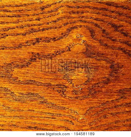 Close-up of finished wooden texture