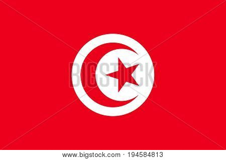 Tunisia flag. National current flag, government and geography emblem. Flat style vector illustration