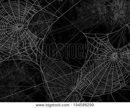 Spider web silhouette against black wall - halloween theme dark background