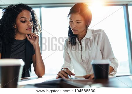 Two young women analyzing business data sitting on a table in office. Woman entrepreneurs at work in office with coffee cups on table.