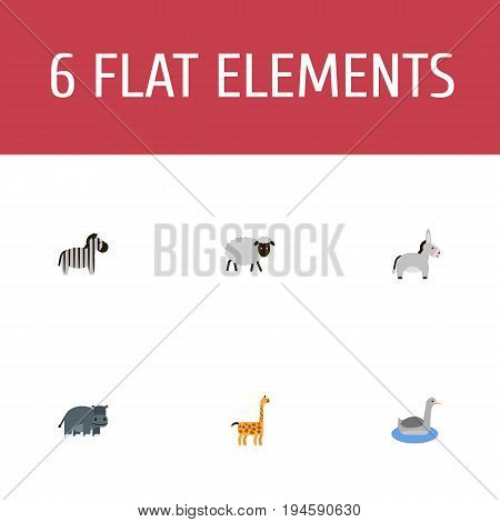Flat Icons Jackass, Mutton, Waterbird And Other Vector Elements. Set Of Zoology Flat Icons Symbols Also Includes Animal, Merinos, Camelopard Objects.