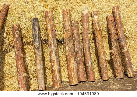 Logs On a briquette of hay. a stack of hay.