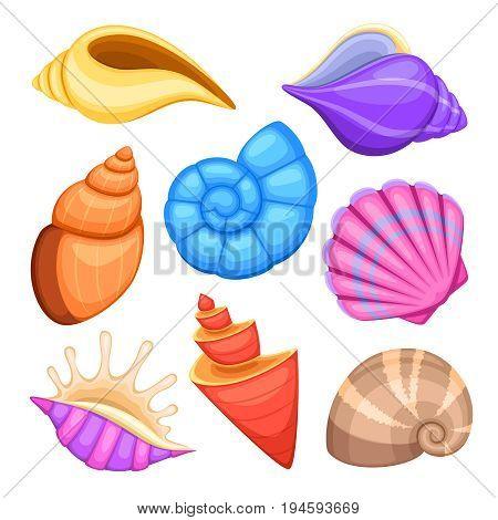 Ocean cockleshells. Cartoon sea shells vector collection. Illustration of sea cockleshells