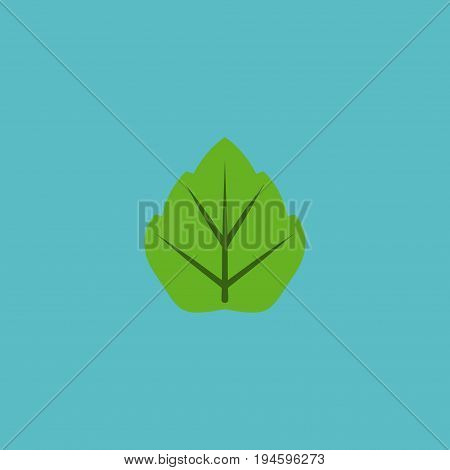 Flat Icon Leaf Element. Vector Illustration Of Flat Icon Foliage Isolated On Clean Background. Can Be Used As Leaf, Foliage And Tree Symbols.