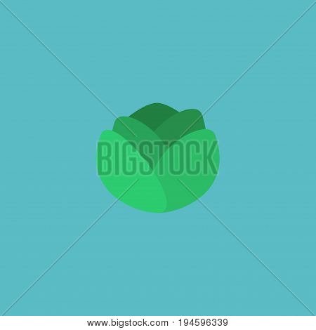 Flat Icon Cabbage Element. Vector Illustration Of Flat Icon Cauliflower Isolated On Clean Background. Can Be Used As Cauliflower, Cabbage And Cole Symbols.