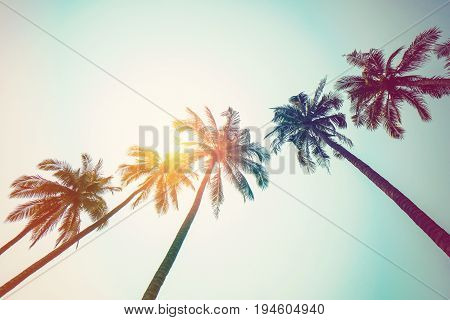 Coconut Palm Tree On Beach And Sunlight With Vintage Toned Effect.