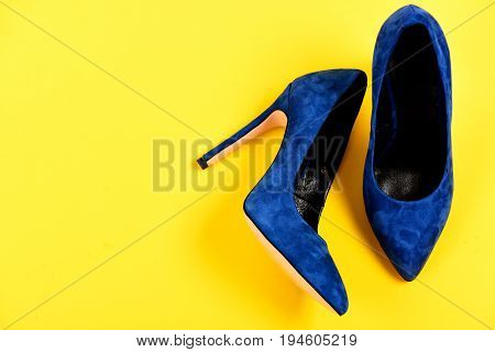 Fashion And Beauty Concept. Pair Of Formal Suede Female Shoes