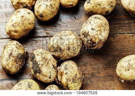 Young unwashed potatoes scattered on a wooden background space for text