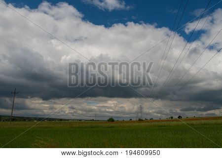 Landscape With Power Lines And Red Weed