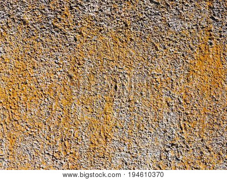 Texture of cement plaster for use as a background. The old rough surface is covered with colored moss.The texture is similar to rust.