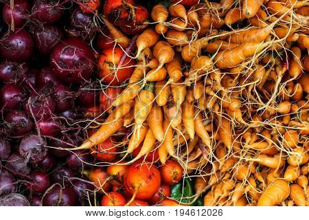 Fresh red beets and carrots background