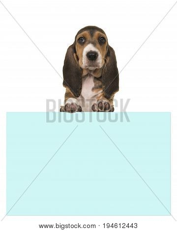 Cute 8 weeks old french basset puppy holding a blue paper board with room for text on a white background