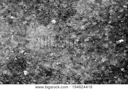 Full frame black and white close up photograph of a rock with many tiny cracks in the surface.