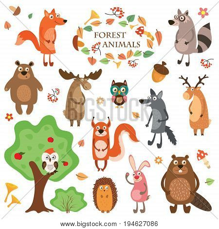 A set of cute animals on a white background isolated. Vector illustration in a flat style, hedgehog, elk, fox, deer, squirrel, raccoon, and bear.
