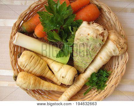 Basket with celery, leek, root parsley, celery green, carrots