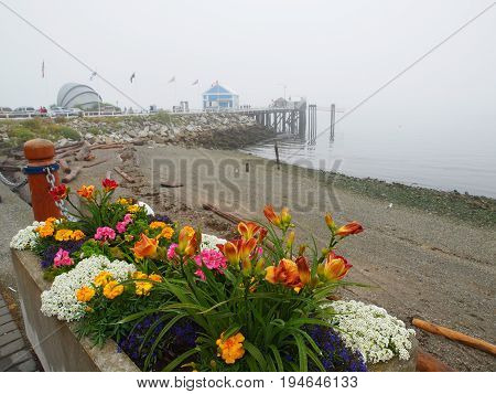 Seawalk on a foggy day in Sidney Vancouver Island British Columbia