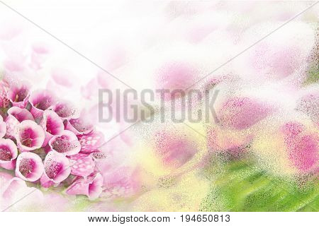Light background with beautiful purple flowers Foxglove