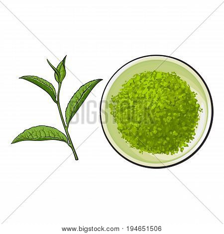 Hand drawn bowl of matcha powder and green tea leaf, sketch style vector illustration isolated on white background. Realistic hand drawing of matcha powder in white bowl and green tea leaf