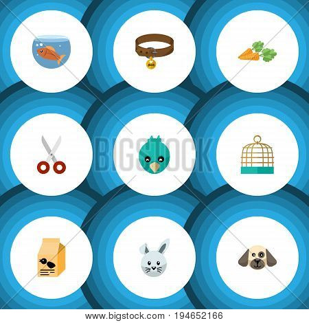 Flat Icon Pets Set Of Puppy, Sparrow, Fishbowl And Other Vector Objects. Also Includes Bird, Dog, Vegetable Elements.
