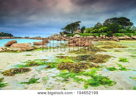 Amazing rocky beach with pink granite stones and wonderful green gardens on the coast Ploumanach Perros-Guirec Pink Granite Coast Brittany France Europe