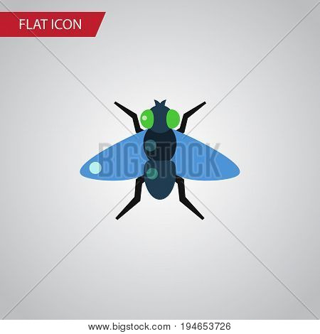 Isolated Bluebottle Flat Icon. Dung Vector Element Can Be Used For Dung, Fly, Bluebottle Design Concept.