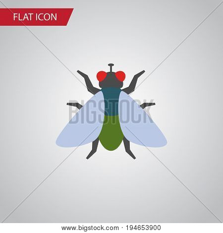 Isolated Buzz Flat Icon. Fly Vector Element Can Be Used For Fly, Insect, Buzz Design Concept.