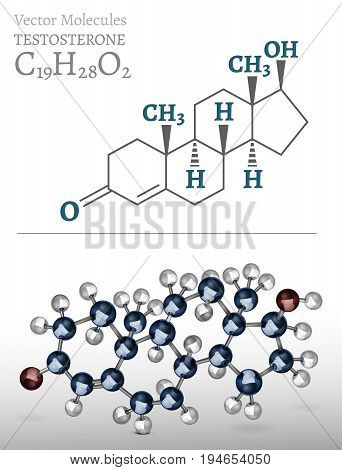 Testosterone molecule structure in 3D style. Vector illustration an metallic blue and silver colours. C19H28O2 image on a light grey background. Scientific, educational and popular-scientific concept.