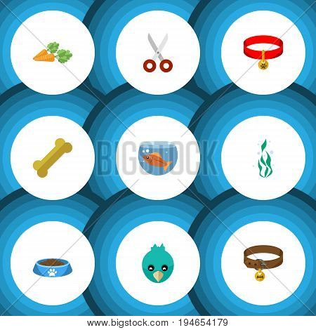 Flat Icon Pets Set Of Hound Necklace, Osseous, Sparrow And Other Vector Objects. Also Includes Bone, Food, Necklace Elements.