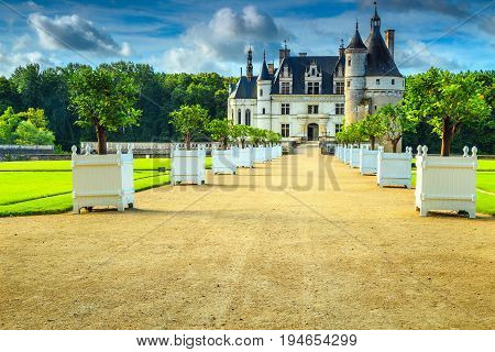 Beautiful Chenonceau royal castle on the Loire river decorated entrance walkway with citron trees Loire valley France Europe
